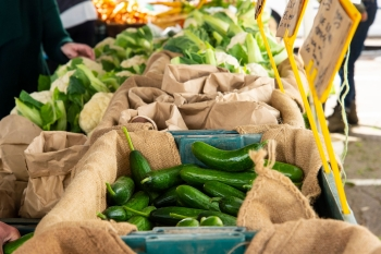 Adelaide-Showgrounds-Farmers-Market-15