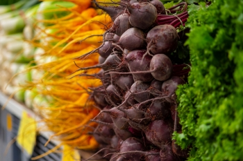 Adelaide-Showgrounds-Farmers-Market-6
